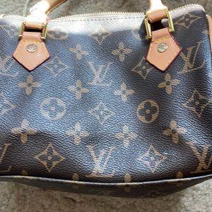 Louis Vuitton print mini purse